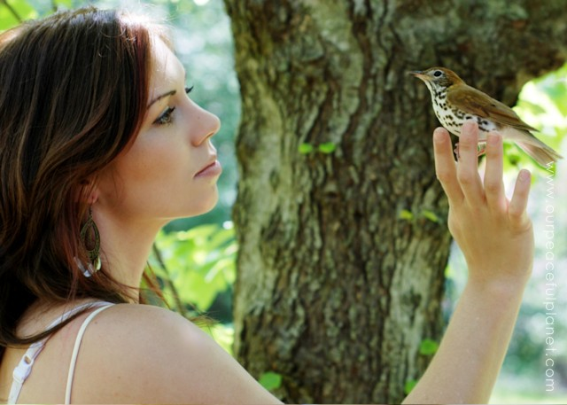 This true story, full of actual photos, will warm your heart. It's will also affirm the connection between people and other living things, which we should never take lightly. Read how one little bird showed his gratitude for some love and kindness.