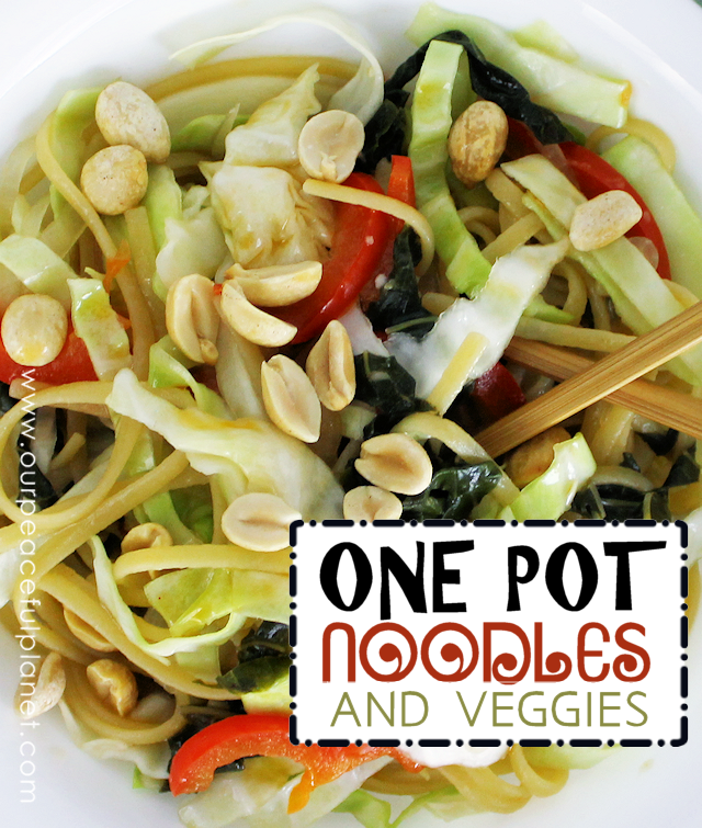 If you like QUICK HEALTHY ONE POT MEALS we got you covered on all counts! You toss everything into the pot except the cabbage and rice vinegar and cook it for 9 minutes. Then add those last two ingredients and you're good to go! Toss a few peanuts on top for added flavor and crunch.