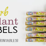 Herb Plant Labels DIY (Free Printables!)