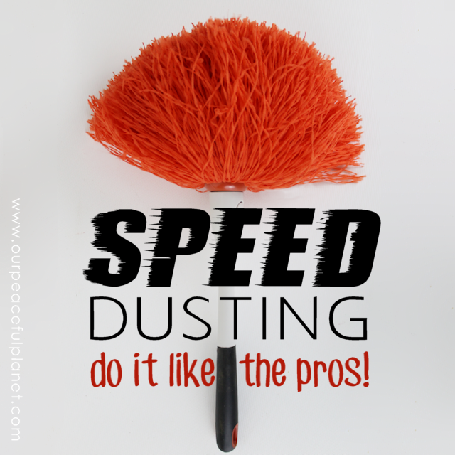 Cleaning tips speed dusting do it like the pros - Tips for dusting your home ...