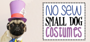 Unique small dog Halloween costume ideas made from craft foam! Free patterns! Superman dog costume, a Mad Hatter dog costume, Gandalf dog costume & more!