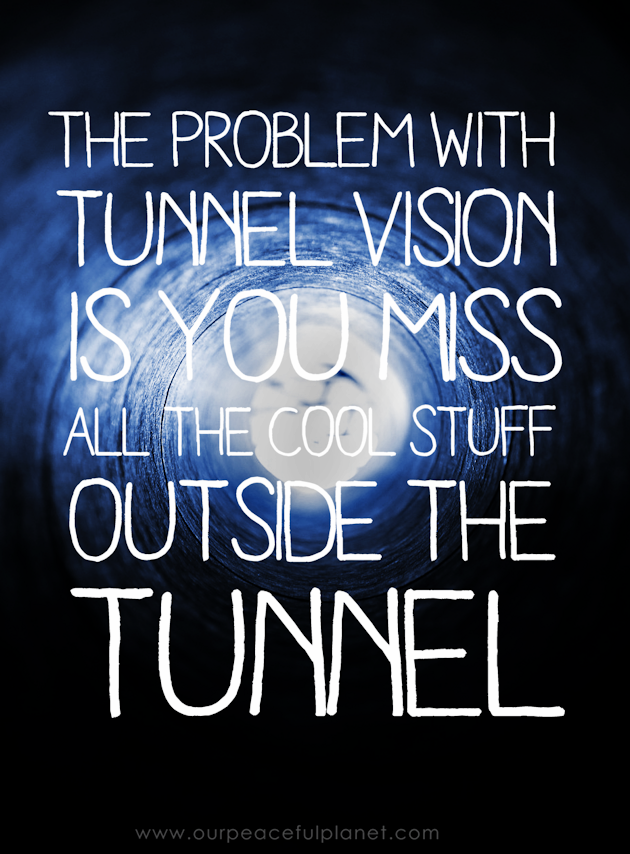 The thing about life is it's best viewed at a distance. Why? Because if you have tunnel vision you miss all the cool stuff outside the tunnel!