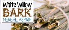Herbal Aspirin : White Willow Bark
