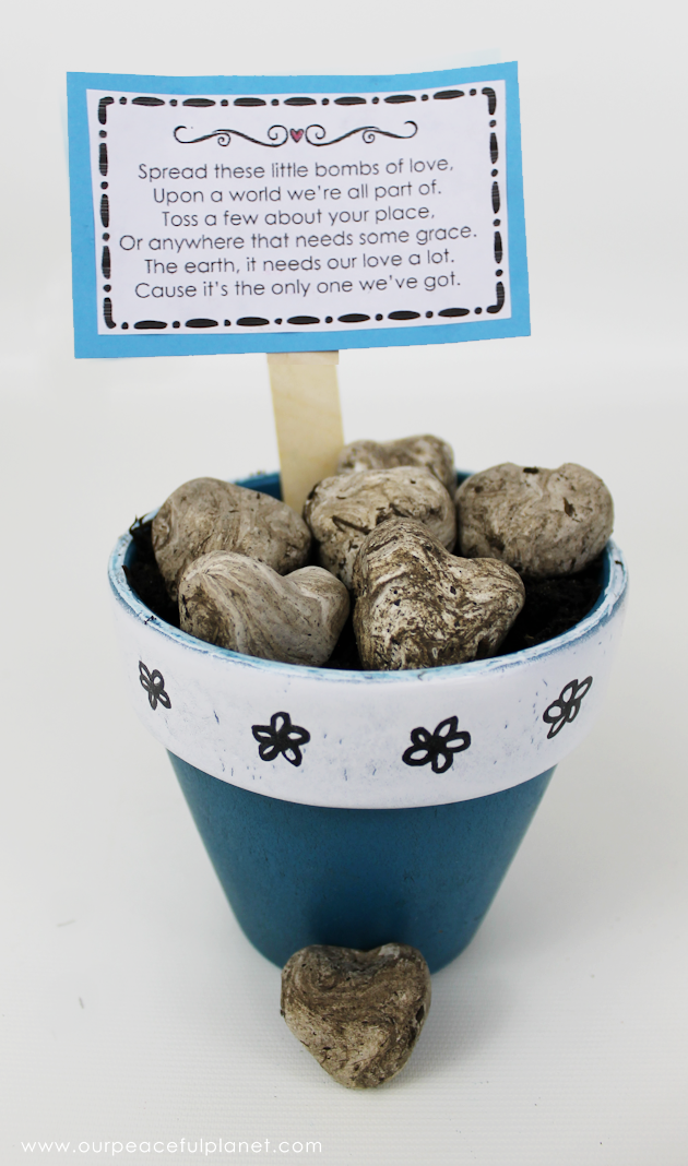 What better way to celebrate Earth Day than tossing around some of these heart shaped wildflower seed bombs. Easy and inexpensive. Show the earth some love!