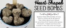 DIY Heart Shaped Wildflower Seed Bombs