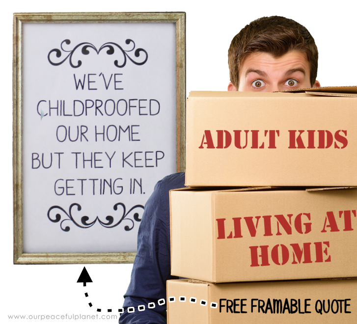 "The quote ""We've child-proofed our home but they keep getting in"" hangs in our home. We've got some good tips for those of you who also have boomerang kids."