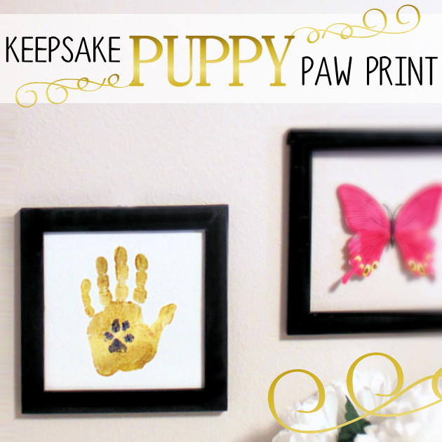 DIY Keepsake Puppy Paw Print SQ