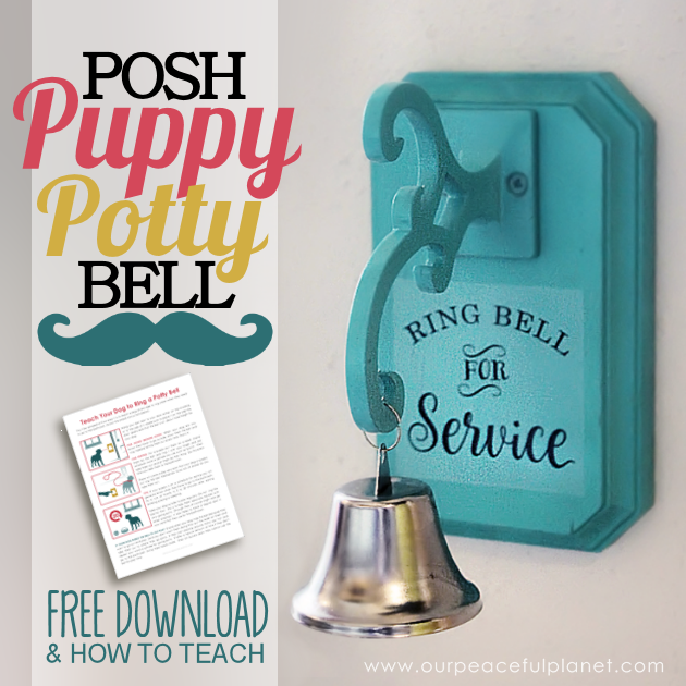 We'll show you how to potty train a dog or puppy to easily ring a bell when they need to go out. We've also got a great tutorial on how to make the bell!