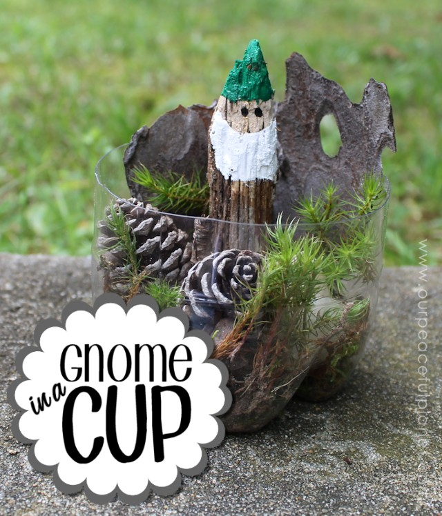 Gnome in a Cup