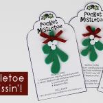 Pocket Mistletoe DIY For Quick Kisses!