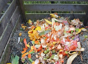 Composting Pulp