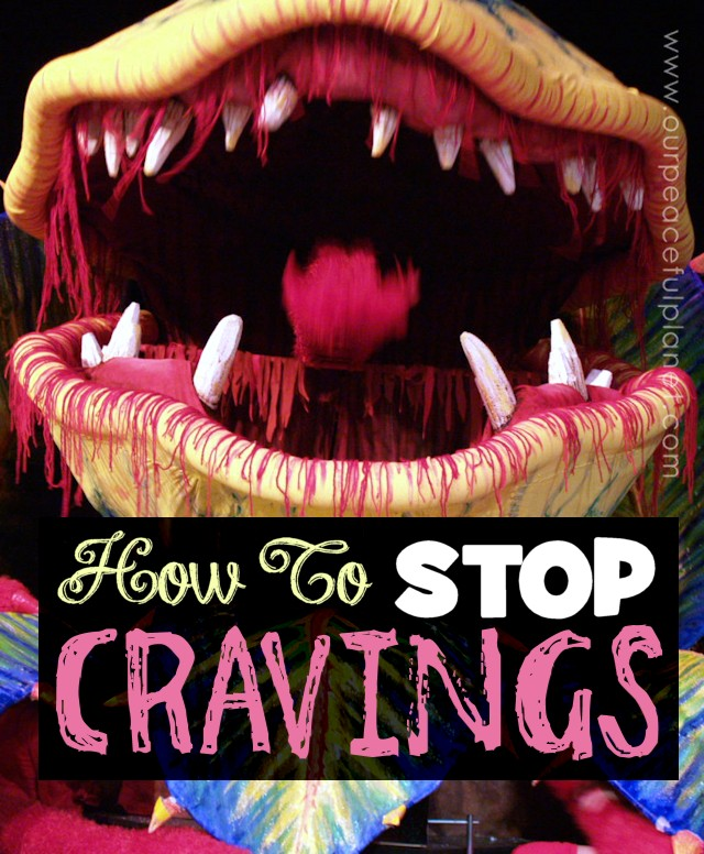 How To Stop Cravings