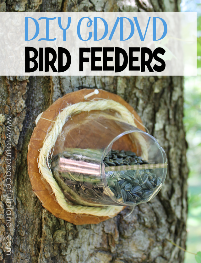 Turn old cd 39 s plastic cups into bird feeders for How to make a bird feeder using a plastic bottle
