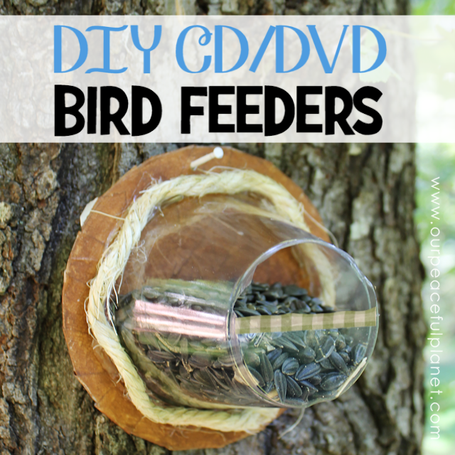 DIY CD DVD Bird Feeders Upcycle SQ