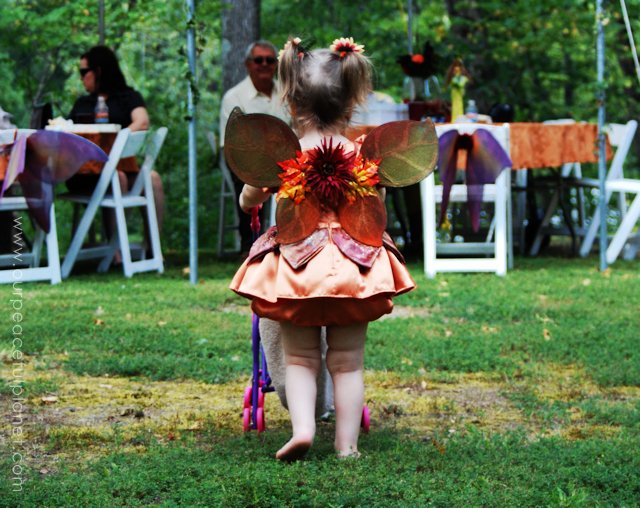 Ideas For a Fairyland Wedding 2