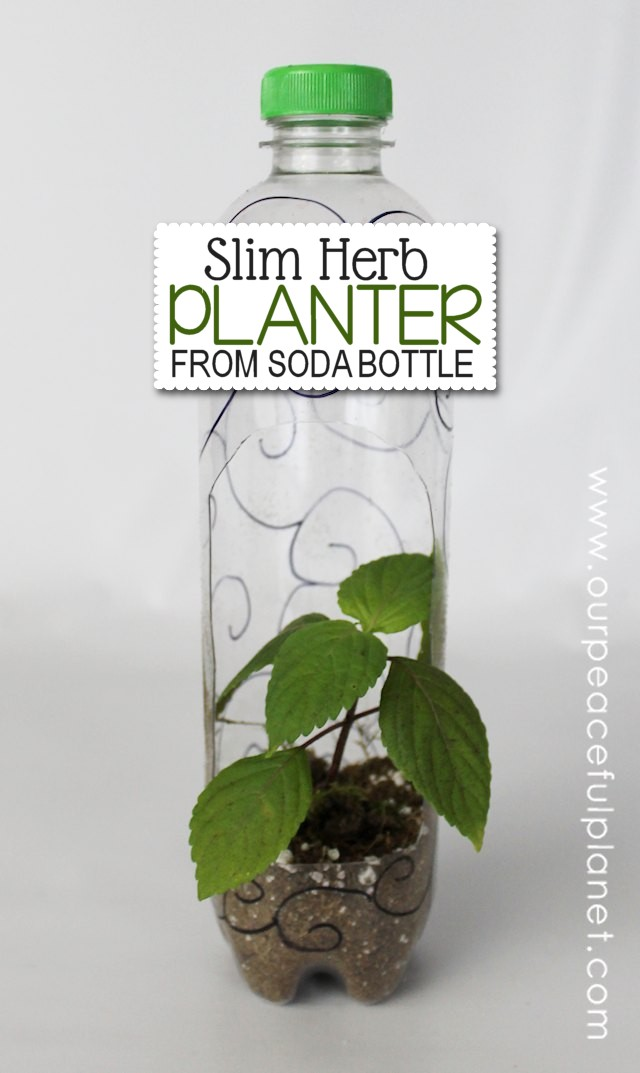 Here's a wonderful and practical upcycle project! We've got three different types of planters you can make using plastic soda bottles! One is even self-watering. Ü There's also a FREE DOWNLOAD.