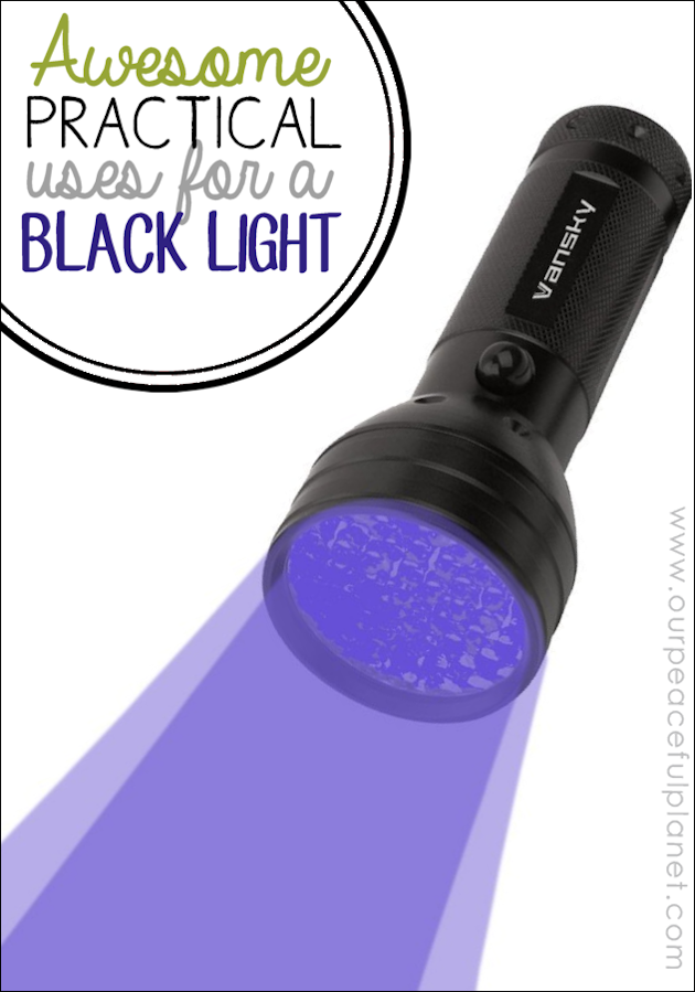 Protect your stuff and more! Learn how an inexpensive black light flashlight has a variety of uses and is a great addition to your home gadgets.