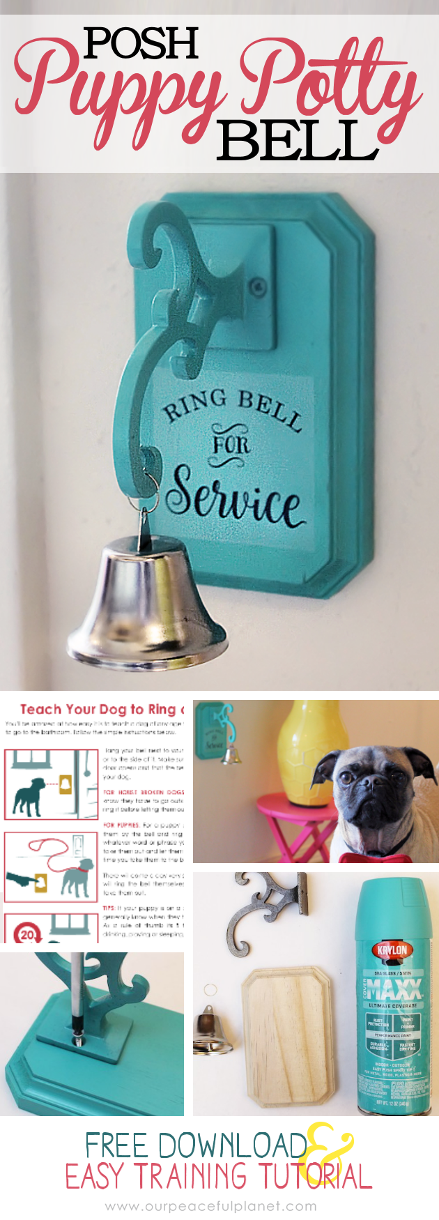 How To Potty Train A Dog With A Bell