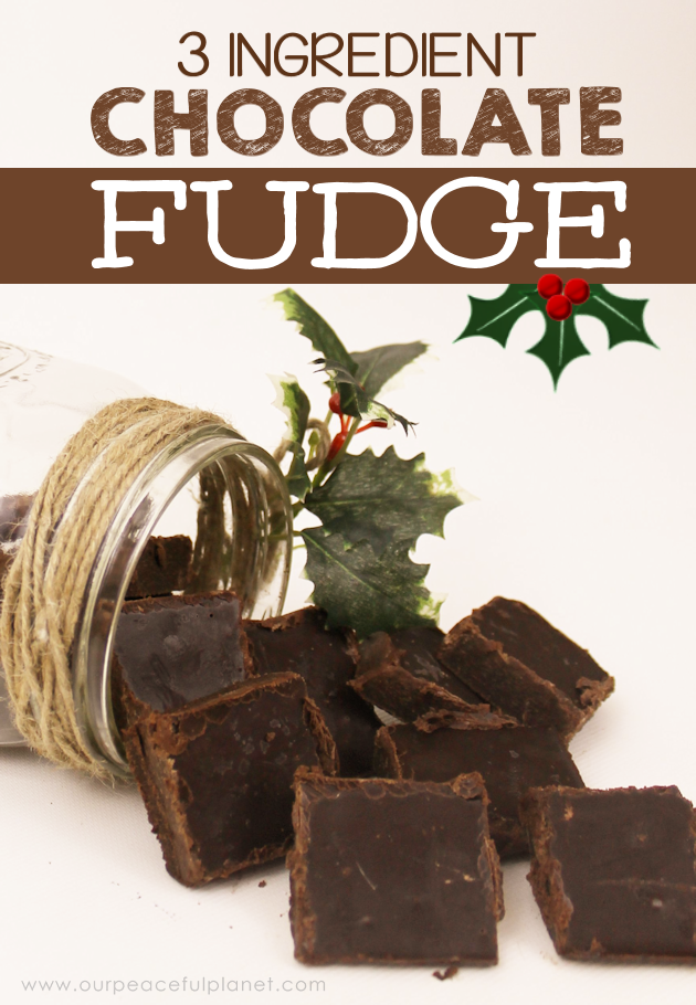 This is the creamiest quickest 3 ingredient healthy chocolate fudge recipe ever! Makes a great gift for the holidays or better yet just eat it all yourself!