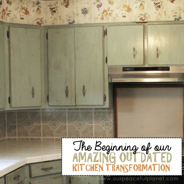 Follow along with our series as we show you how to do outdated kitchen transformation without spending hundreds and hundreds of dollars. You'll be amazed!