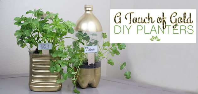These metro modern self watering planters will catch everyone's eye. They're low maintenance plant care disguised in classy uniquely upcycled soda bottles.