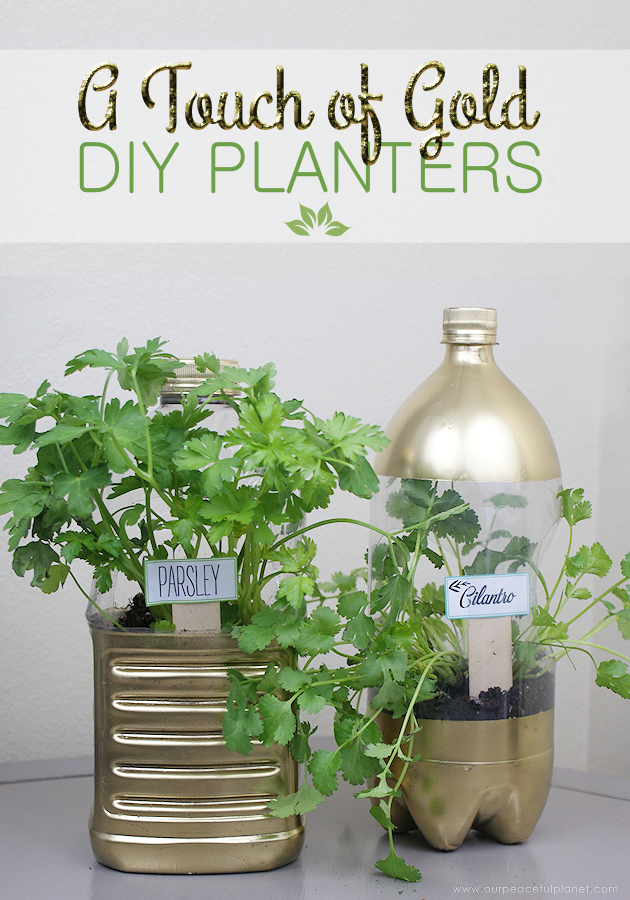 DIY planters never looked so good! But then a touch of gold makes everything better! They are perfect for herbs using our free printable plant markers!