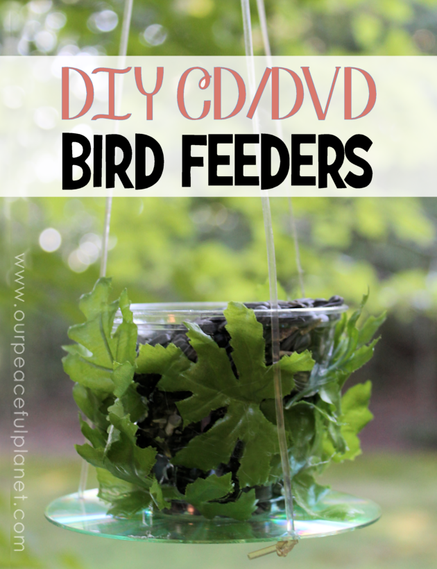 CD DVD Bird Feeders DIY