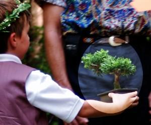 Ring Bearer Carrying Rings Hung on Bonsai Tree